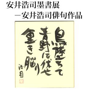 No.001 豊口陽子選 安井浩司百十四句