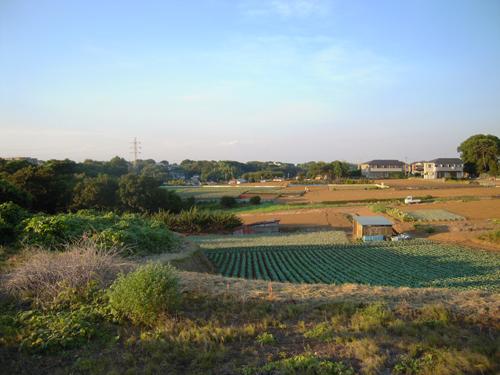 羽沢_001_01