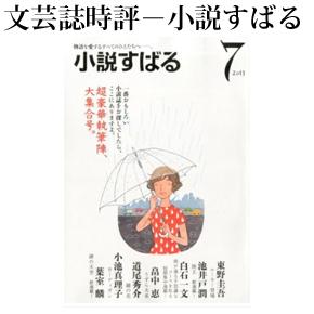No.045 小説すばる 2013年07月号