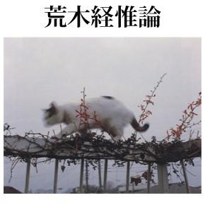 【荒木経惟論】この世の花たち(前編)