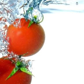 第014回 もしも世界中の勘違いが犠牲フライだったなら/死体の石を思い出と呼ぶ理由について/トマトを食べる話、もしくは愛してると言うだけの話