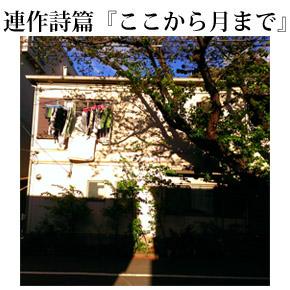 第04回 装/輝/猫