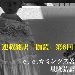 No.006 伽藍【H】