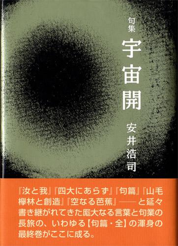 安井浩司(評論集)_009